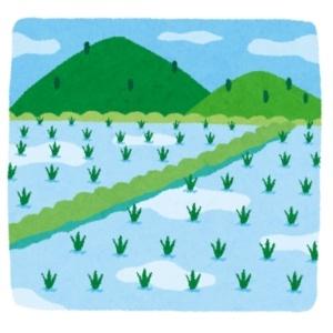 田と山の田舎の風景